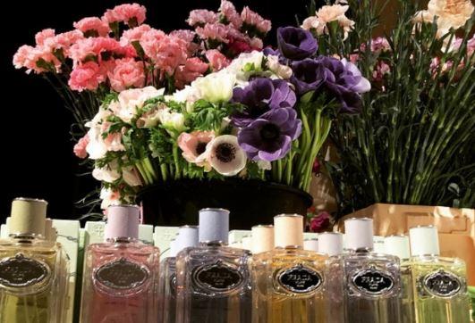 infusión en perfumes